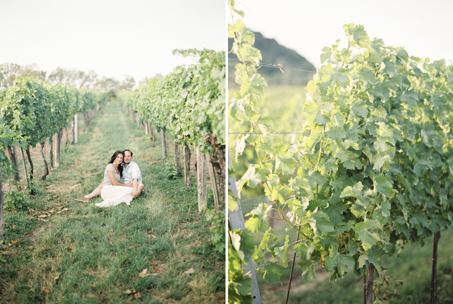vineyard engagement shoot in Vienna, Melanie Nedelko Photography
